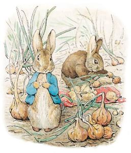 PeterRabbit_000