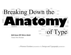 typography_breakdown_infographic_by_dubgee-d64jcha