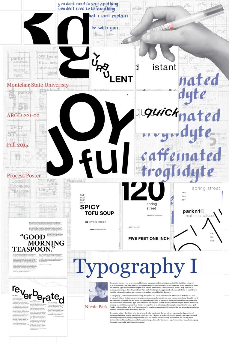 type1-process-posterpink.jpg
